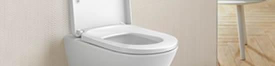Idraulico Cogliate  - Idraulico Cogliate  - Riparazione WC